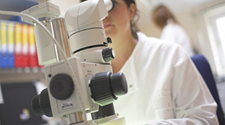 Close up of student looking through microscope